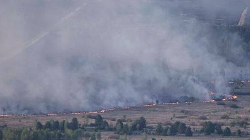 пожежа в зоні відчуження
