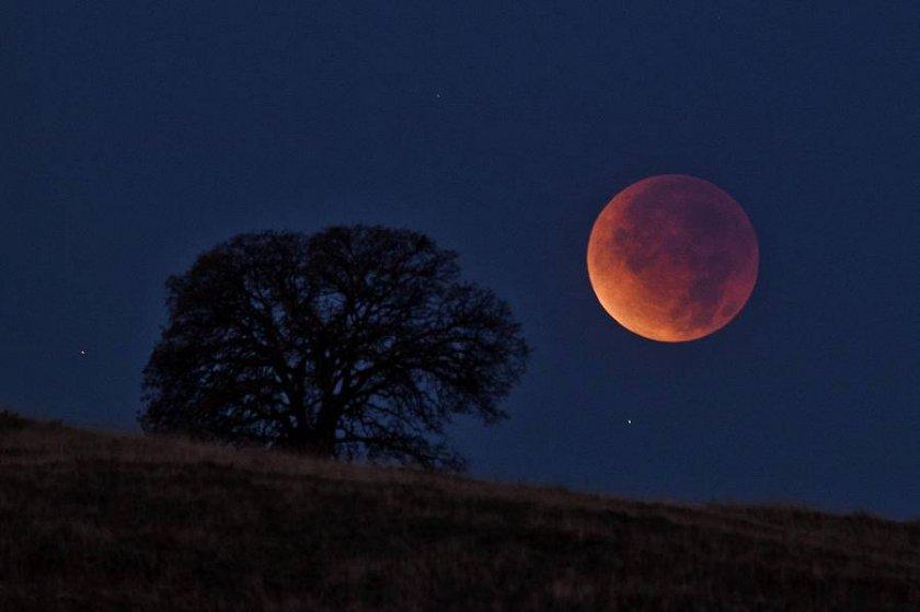 коли відбудеться найдовше за XXI століття місячне затемнення
